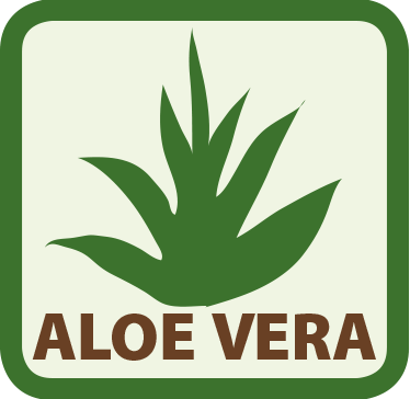 Icon Aloe Vera in Matratze